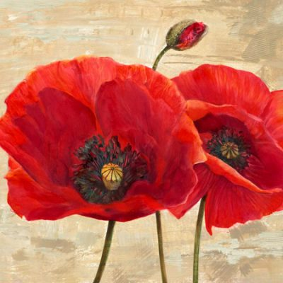 Cynthia Ann – Red Poppies (detail II)