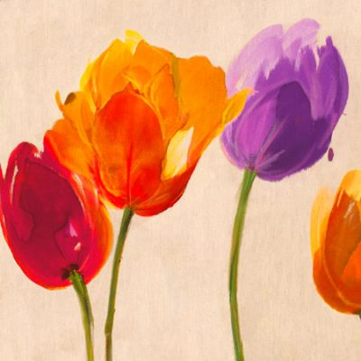 Luca Villa – Tulips & Colors (detail)