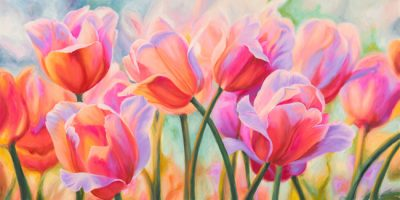 Cynthia Ann – Tulips in Wonderland