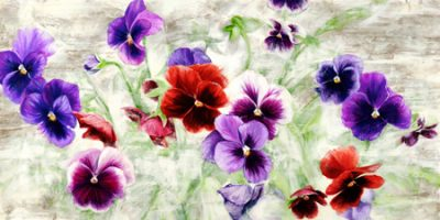 Jenny Thomlinson – Field of Pansies