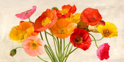 Luca Villa – Poppies in Spring
