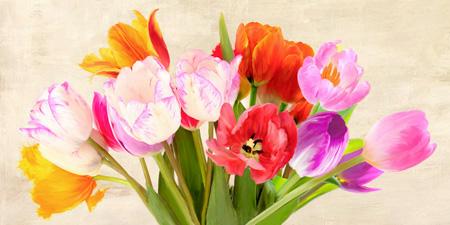 Luca Villa - Tulips in Spring