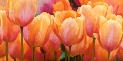 Luca Villa – Summer Tulips