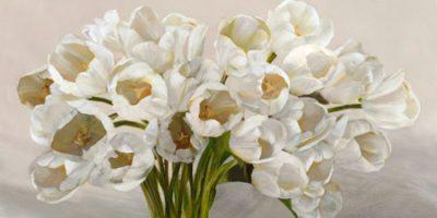 Leonardo Sanna – Tulipes blanches ΙΙ