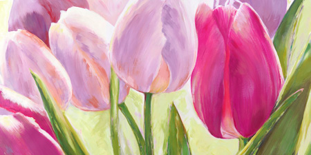 Leonardo Sanna - Tulipes ΙΙ