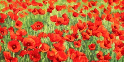 Silvia Mei – Poppy Field