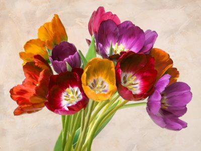 Teo Rizzardi – Tulipani danzanti