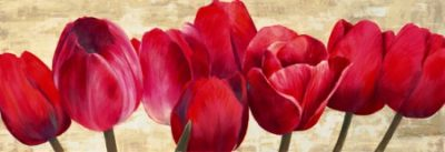 Cynthia Ann – Red Tulips