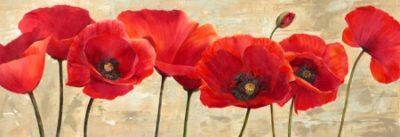 Cynthia Ann – Red Poppies