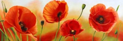 Luca Villa – Poppies in the wind