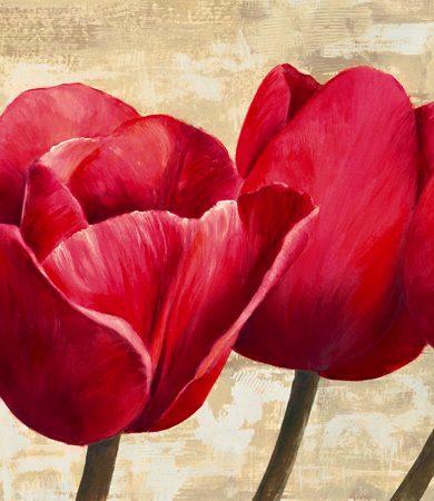 Cynthia Ann - Red Tulips (detail)