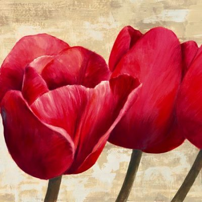 Cynthia Ann – Red Tulips (detail)