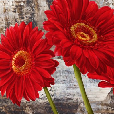 Jenny Thomlinson – Red Gerberas I