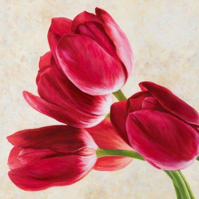 Luca Villa – Tulip concerto (detail)