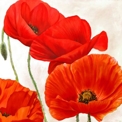 Luca Villa – Poppies II
