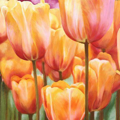 Luca Villa – Spring Tulips II