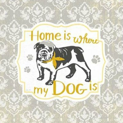 Ferri Stefania – Home Is Where My Dog Is