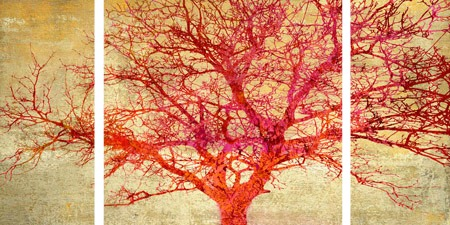 Alessio Aprile - Coral Tree - 3