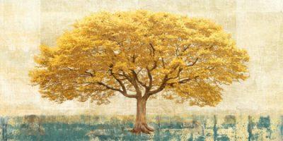 Leornado Bacci – Gilded Oak
