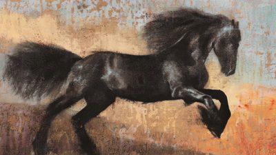 Dario Moschetta – Black Stallion
