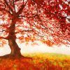 Jan Eelder - Red Leaves