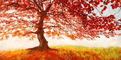 Jan Eelder – Red Leaves