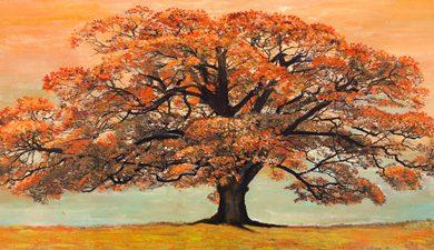 Jan Eelder - Oak