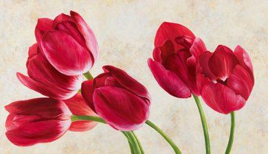 Luca Villa - Tulip concerto