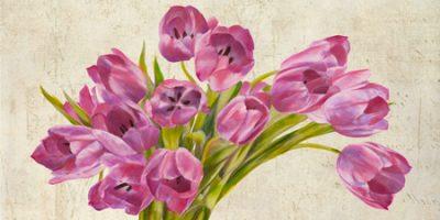 Leonardo Sanna – Tulipes