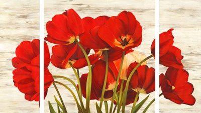 Serena Biffi – French Tulips – 3