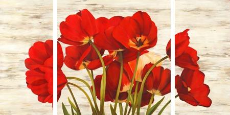 Serena Biffi – French Tulips - 3