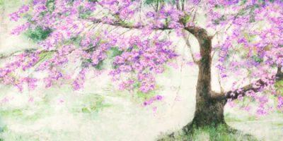 Silvia Mei – Albero fiorito