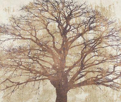 Alessio Aprile – Sacred Oak
