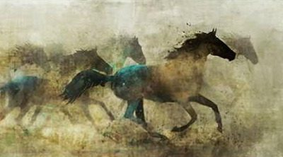 Roko Ken – Horses Wild And Free