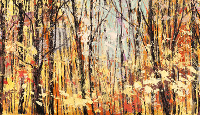 Lucas - Nel bosco assolato