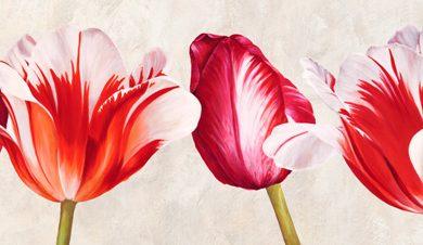 Luca Villa - Gioiosi tulipani
