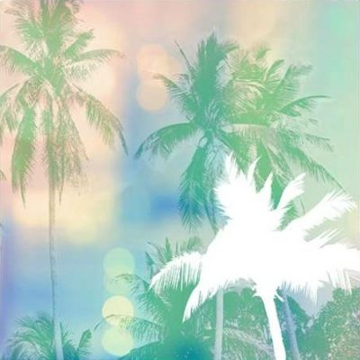 Taylor Evangeline – Soft Palm Trees