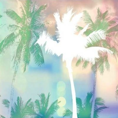 Taylor Evangeline – Dreamy Palm Trees