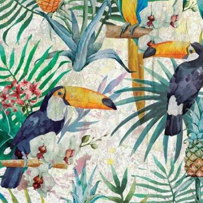 Allen Kimberly – Tropical Life 1
