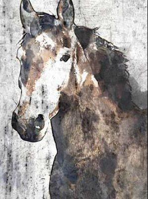 Orlov Irena – Horse Portrait II