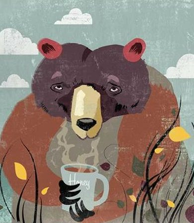 PI Studio - Honey bear