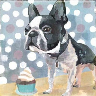 PI Studio – Pug Birthday