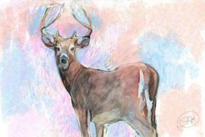 Butcher Sarah – Stag