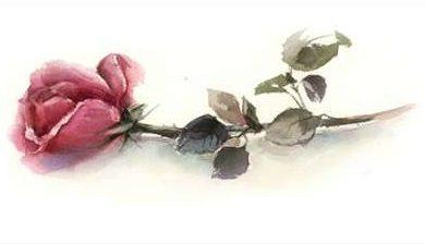 Rodionov Sophia - Simple Rose