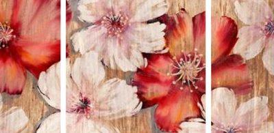 Gottschlag Jurgen – Barnwood Blossoms – 3
