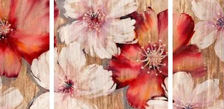 Gottschlag Jurgen - Barnwood Blossoms - 3
