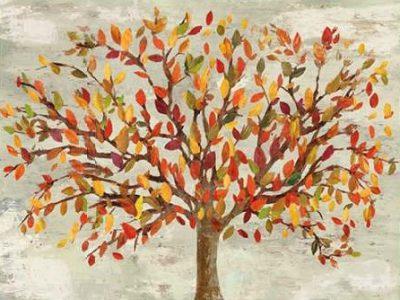 PI Studio – Fall Foliage