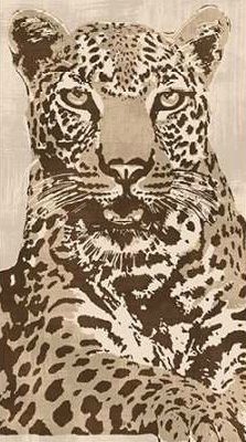 Cooper Andrew – Leopard