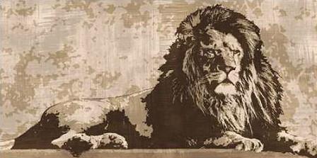 Cooper Andrew - Lion