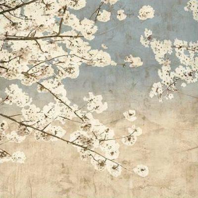 Seba John – Cherry Blossoms II